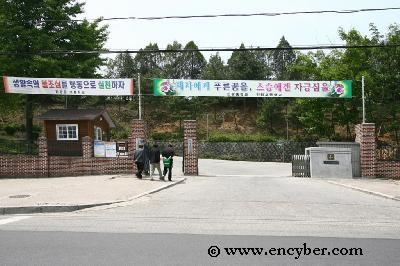 진광중학교